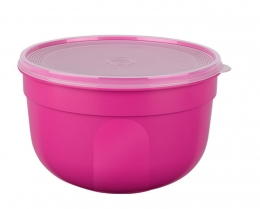 EMSA 4er Set SUPERLINE Colours pink  Frischhalteschale Frischhaltedose Vorratsdose 1,25L